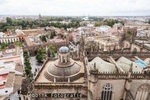 Kathedraal Sevilla Marion Jebbink Fotografie Gemert Nederlandse fotograaf Dutch Photographer